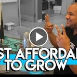 What Is The Most Powerful & Affordable Way To Grow Your Business?